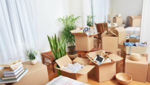 Packers and Movers In Kalyan