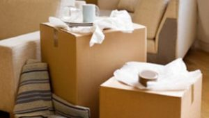 Packers and Movers Seawoods Navi Mumbai