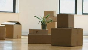 Packers and Movers Kashmira Mumbai